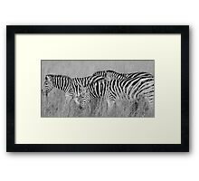 black stripes, white stripes Framed Print