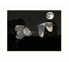 Two Great Egrets  Art Print