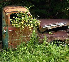 Abandoned Truck by CarolM