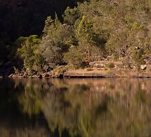 Reflections at the Basin - Bents Basin, NSW by Malcolm Katon