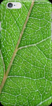 green by BlaizerB