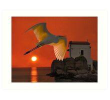Great Egret sunset in Skala Art Print