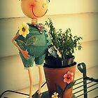 Mr Flowerpot Man by Karen Tregoning