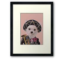 Mexican Chihuahua Framed Print