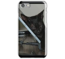 Laptop Kitten iPhone Case/Skin