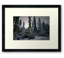 Low Light Delight Framed Print