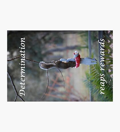 Determination Photographic Print