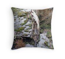 Calafate Bahia Onelli Natural Park 2, Argentina Throw Pillow