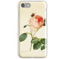 Provence rose iPhone Case/Skin