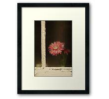 Through the glass Framed Print