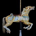 Palomino Carousel Horse by Cindy Longhini