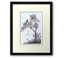 PENDRAWING TREE - BACKGROUND AQUAREL Framed Print