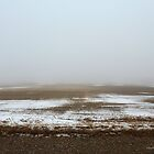 Landscape in Fog by Barberelli