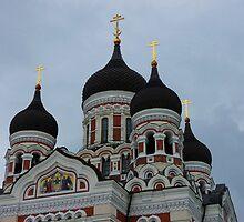 Alexsander Nevsky Church by Lucinda Walter