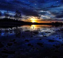 Starry Night by Carolyn  Fletcher