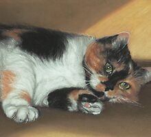 "Calico Cat No.3, ""Ready for my Tummy Rub!"" by Pam Humbargar"