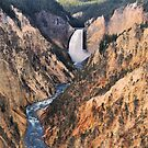 Lower Yellowstone Falls by Stephen Vecchiotti