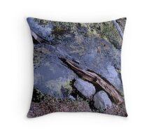 Calafate Bahia Onelli Natural Park 3, Argentina Throw Pillow