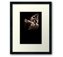 Monochrome Tulip Framed Print