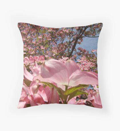 Beautiful Spring Fine Art Photography Pink Dogwood Flowers Throw Pillow