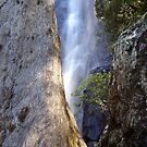 waterfall in the forest by MardiGCalero