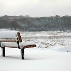 Have a seat, enjoy the view by NVSphoto