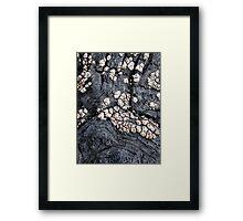 Parchment Swirls Framed Print