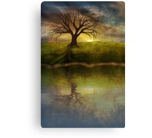 Silent Tree IV Canvas Print