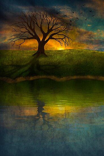 Silent Tree I by Megan Noble