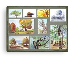 South African Tree Collection Canvas Print
