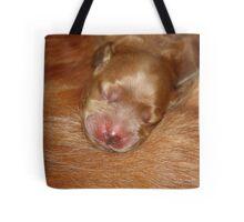 Gemini & Rosie's New Pup #4  Tote Bag