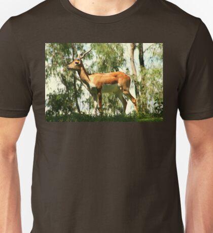 Male African Impala Antelope Unisex T-Shirt