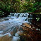 Jamison Creek. (24-2-12) by Warren  Patten