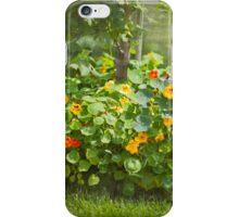 Lush Flower Bed - Nasturtium iPhone Case/Skin