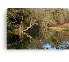 River like a mirror Canvas Print