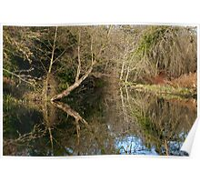 River like a mirror Poster