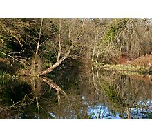 River like a mirror Photographic Print