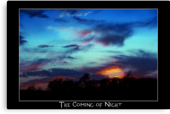 The coming of night by vince dwyer