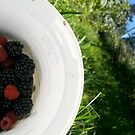 Berry Picking  by Nupur Nag