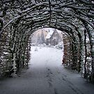 A PLACE TO CALL HOME (Winter in my home town friday feb 3th 2012) by Johan  Nijenhuis