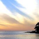 Twilight on the Gulf by designingjudy