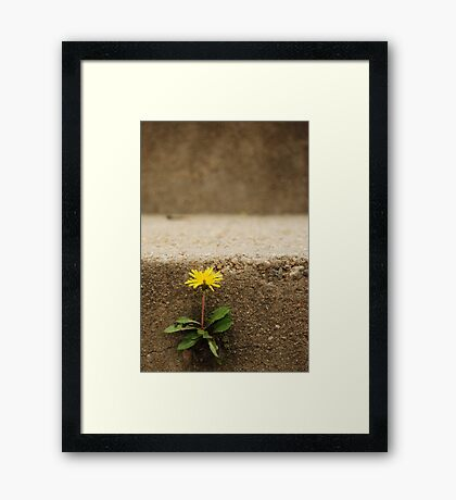 just dandy Framed Print
