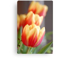 Looking Forward To Spring II Canvas Print