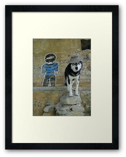 Lobo Bandito by Graham Povey
