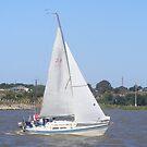 sailing by Charlotte Hark