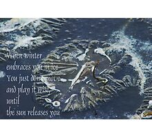 When Winter embraces you in Ice Photographic Print