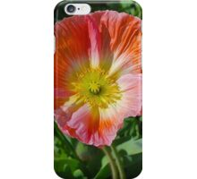Apricot Crinkles iPhone Case/Skin