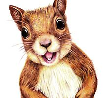Seamus the squirrel says hello by Margaret Sanderson