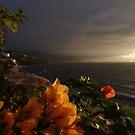 Gorgeous Light Shows I - Grandiosa Iluminación by Bernhard Matejka