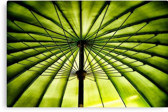 Parasol by Simon Duckworth
